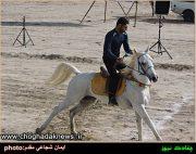 مسابقات اسب دوانی کورس پائیزه استان بوشهر در روستای دویره برگزار شد+تصویر