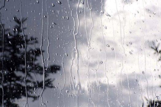 بارش پراکنده باران در استان بوشهر/ دریا طوفانی میشود