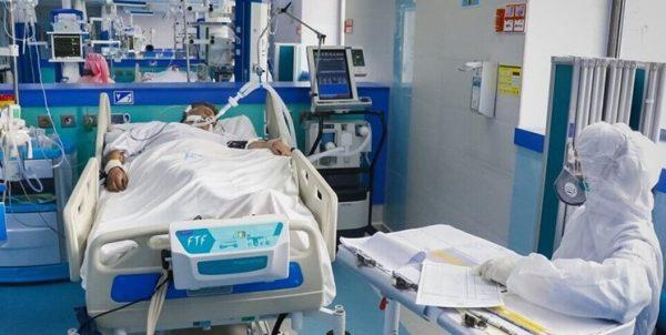 بستری ۲۱ کرونایی در ICU بوشهر/ خطر دورهمیها