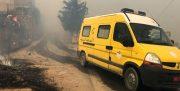 الجزایر: آتشسوزیهای گسترده نتیجه اعمال مجرمانه بوده است